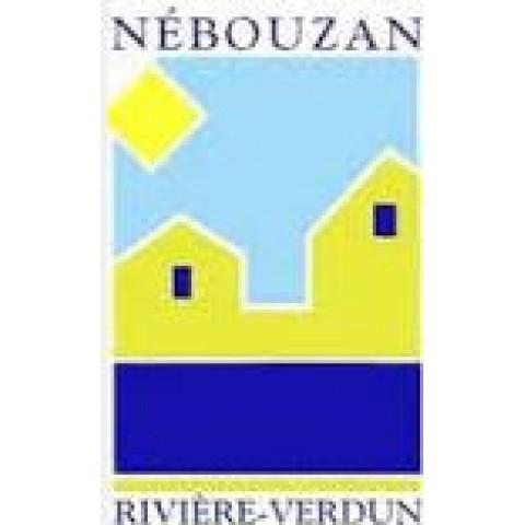 CC Nébouzan Rivière Verdun - Stratégie numérique