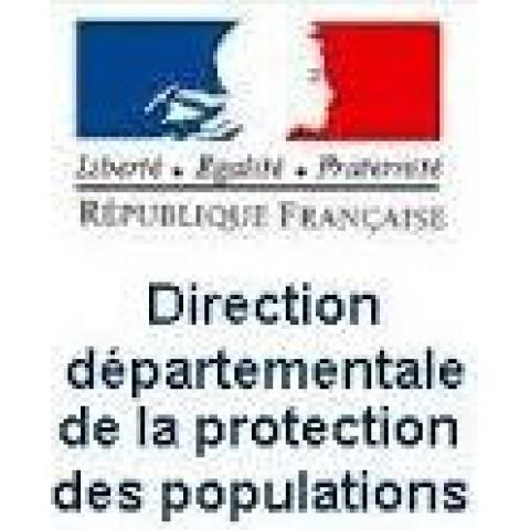 DDCSPP de Lozère - Expérimentation de télétravail